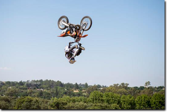 fmx pic6